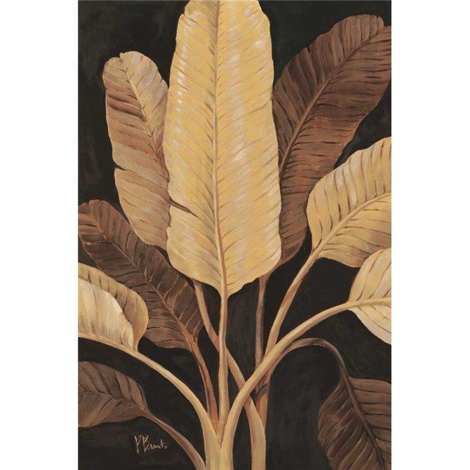 Traveller Palm