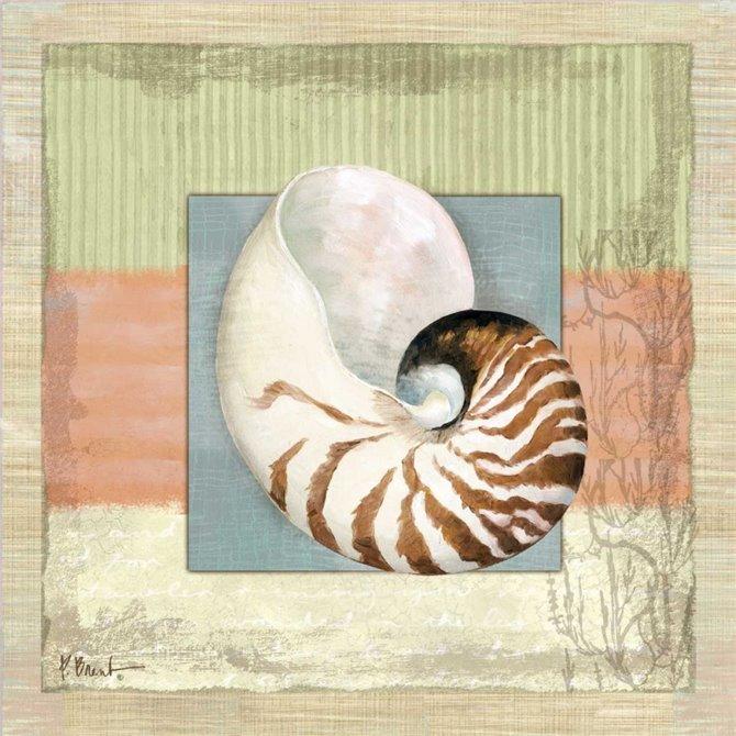 Montego Nautilus