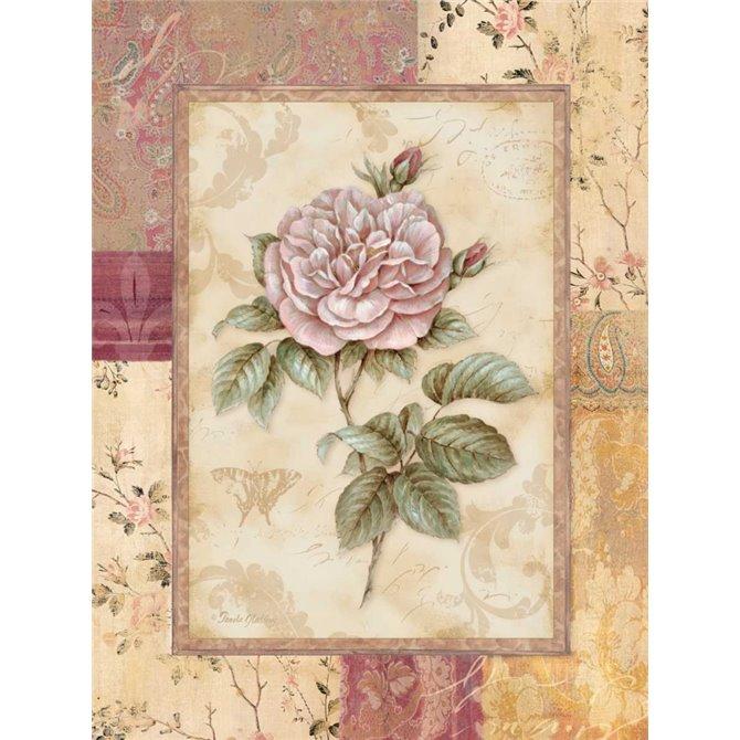 Provence Rose II