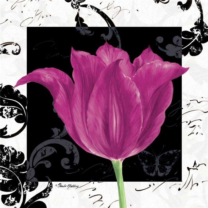 Damask Tulip IV