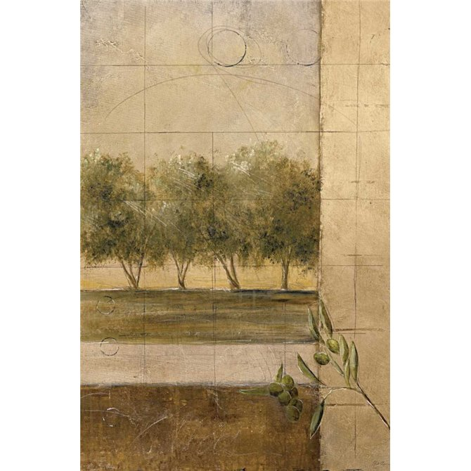Olive Groves II