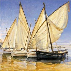 White Sails II