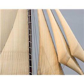 Windward II