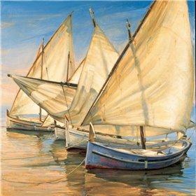 Windward Latin Sails