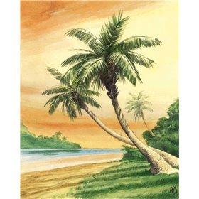 Tropical Dream I