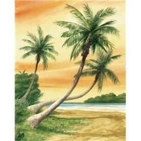 Tropical Dream II