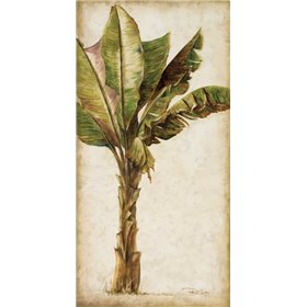 Tropic Banana I