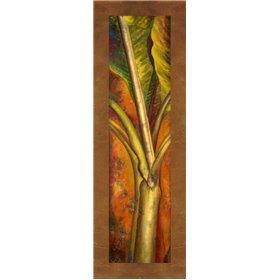 Orange Plantain