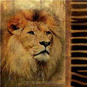 Elegant Safari IV  - Lion