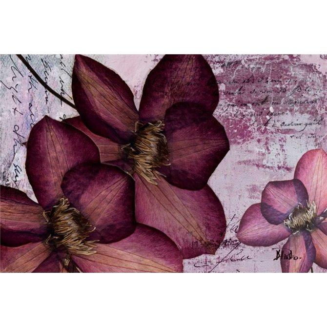 Pressed Flowers II