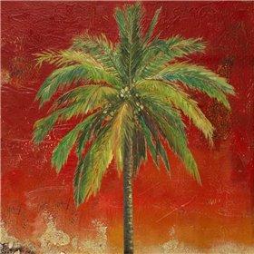 La Palma on Red I