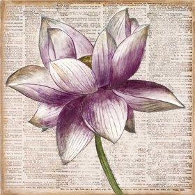 Defined Lotus I