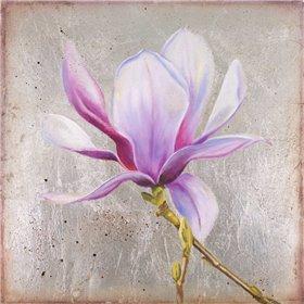 Magnolia on Silver Leaf II