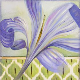 African Lily II