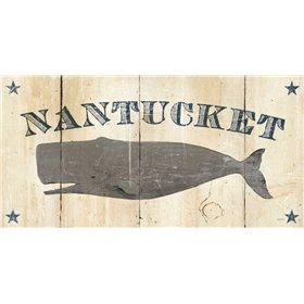 Nantucket Whale