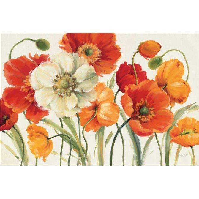 Poppies Melody I
