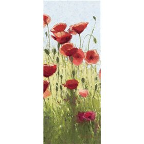 Mountain Poppies I - Wag