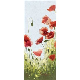 Mountain Poppies II - Wag
