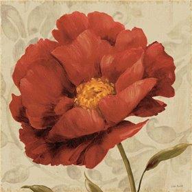 Floral Romance I C