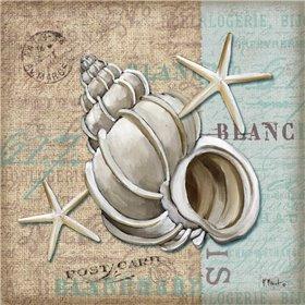 Linen Shells IV