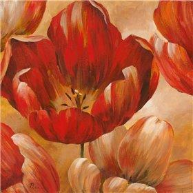 Sunlit Bloom I