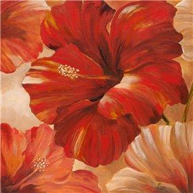 Sunlit Bloom II