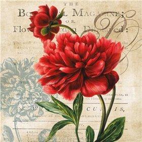 The Botanical
