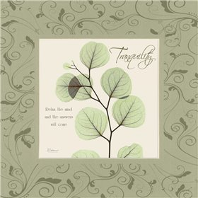 Tranquility on Green Damask