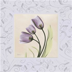 Purple Tulips on Purple Damask