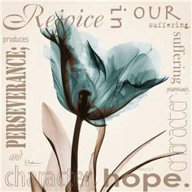 Rejoice - Blue Tulip