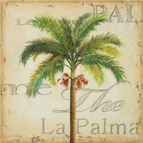 La Palma II