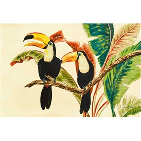 Tropical Toucans I