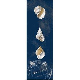 Coastal Shells Panel I