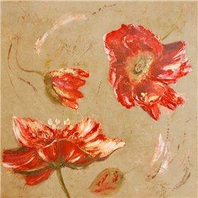 Dance of Poppies II