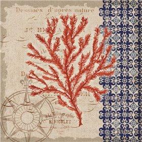 Burlap Coral II