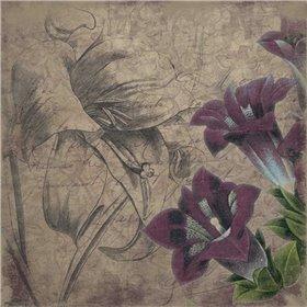 Floral outline 2