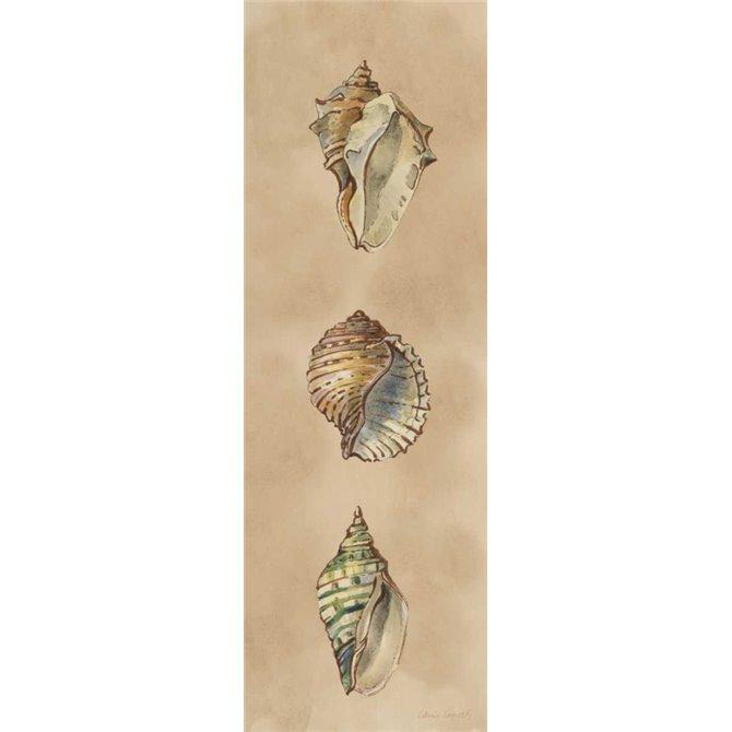 Seashells Panel II