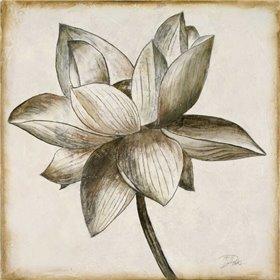 Sepia Lotus I