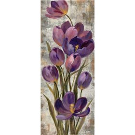 Royal Purple Tulips I