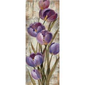 Royal Purple Tulips II