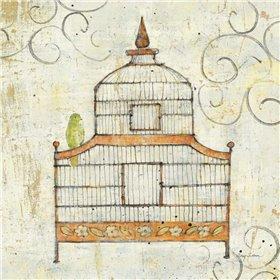 Bird Cage III