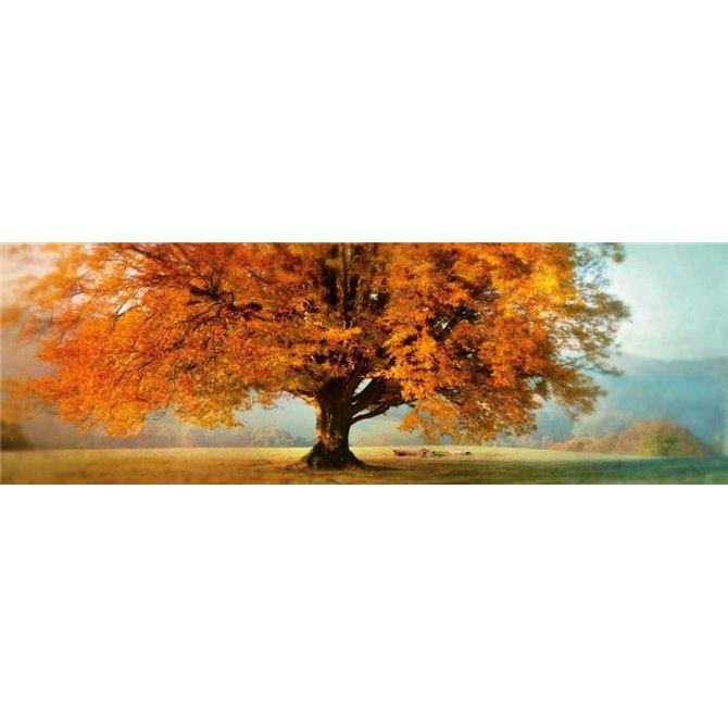 Autumn Emotion