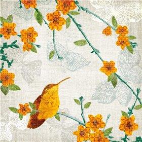 Birds and Butterflies III