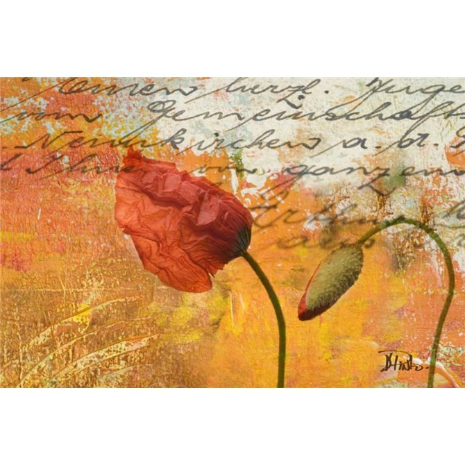 Poppies Composition II