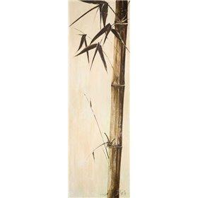 Sepia Guadua Bamboo II