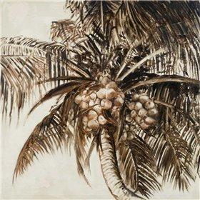 Coconut Palm I