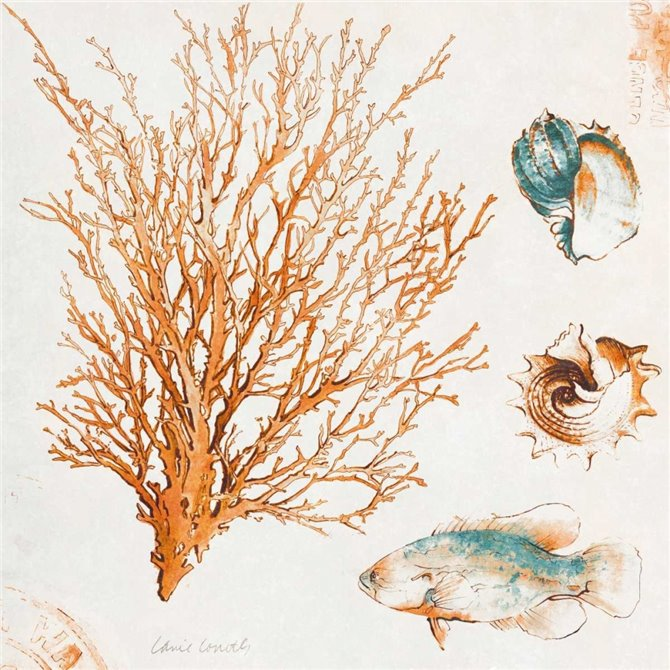 Coastal Teal Coral IV