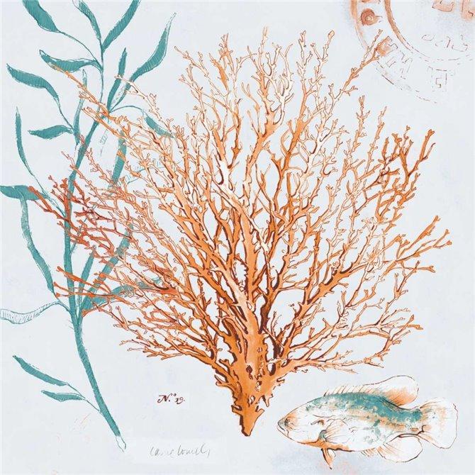 Blue Coral Medley II