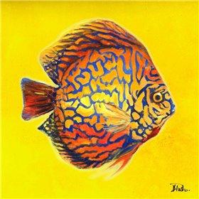Bright Aquatic Life I