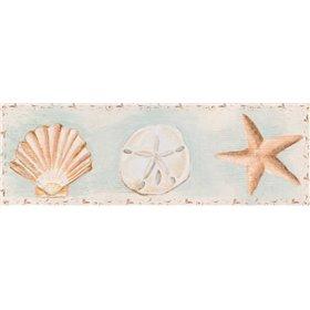Sandy Shells I